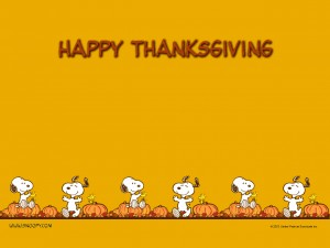 Happy Thanksgiving from Bodacious Cases