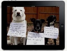 Be careful what you feed your dog, or if they're in the iPad or in your iPhone 4 or iPhone 4S I think you're safe to feed them whatever you want