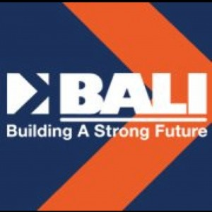 bali square logo